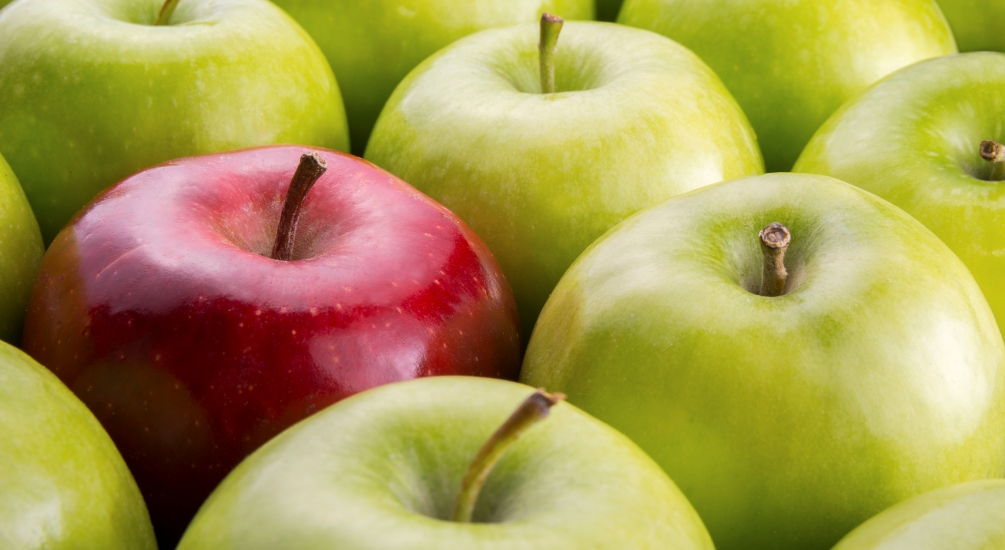 Marketing Strategy Consulting Services in Connecticut-One Red Apple Stands Out in a Bunch
