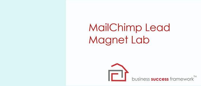 MailChimp Lead Magnet Lab.PNG